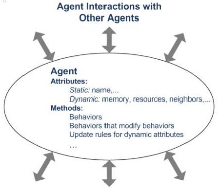 Typical agent in agent-based model.jpg
